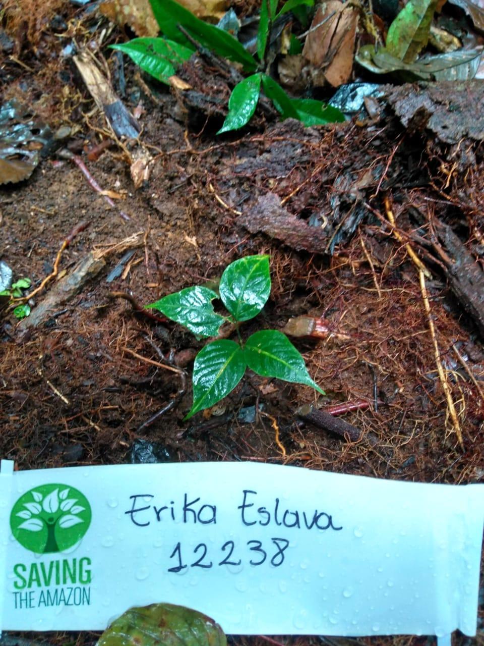 Erika Eslava