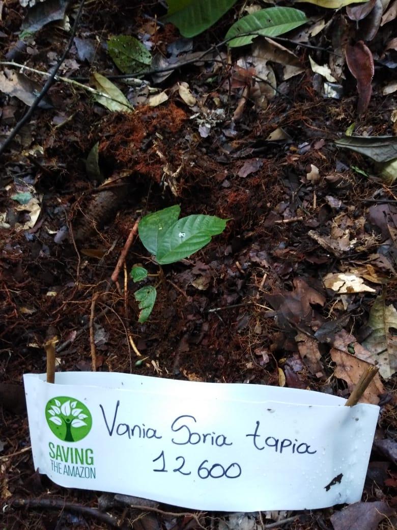 vania Soria Tapia