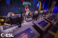 Majitel esport týmu Brute: Od hráčů vyžadujeme profesionalitu!