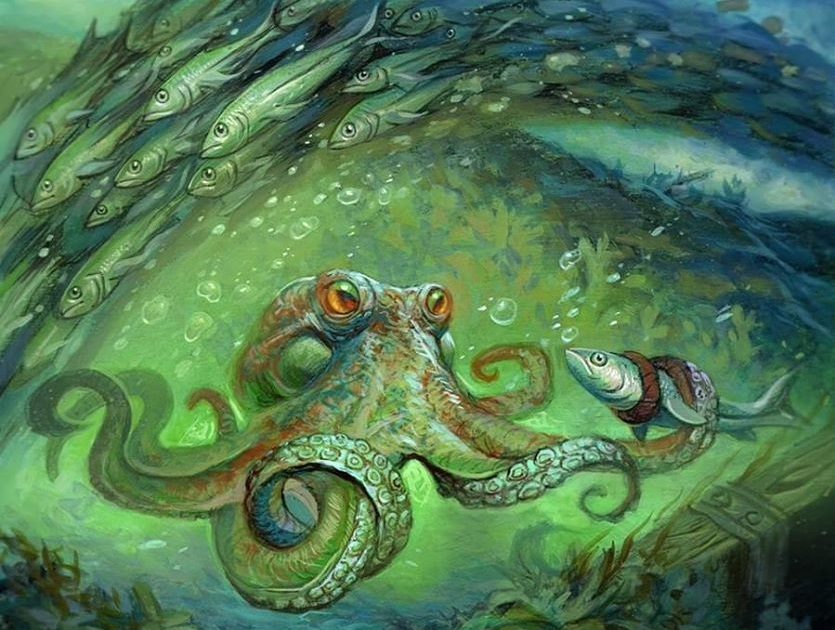 Sea-Dasher Octopus Is Much Better Than You Think