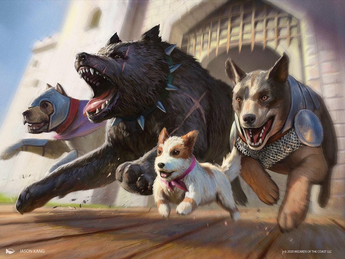 Dogs Jumpstart Deck Gets Three New Friends