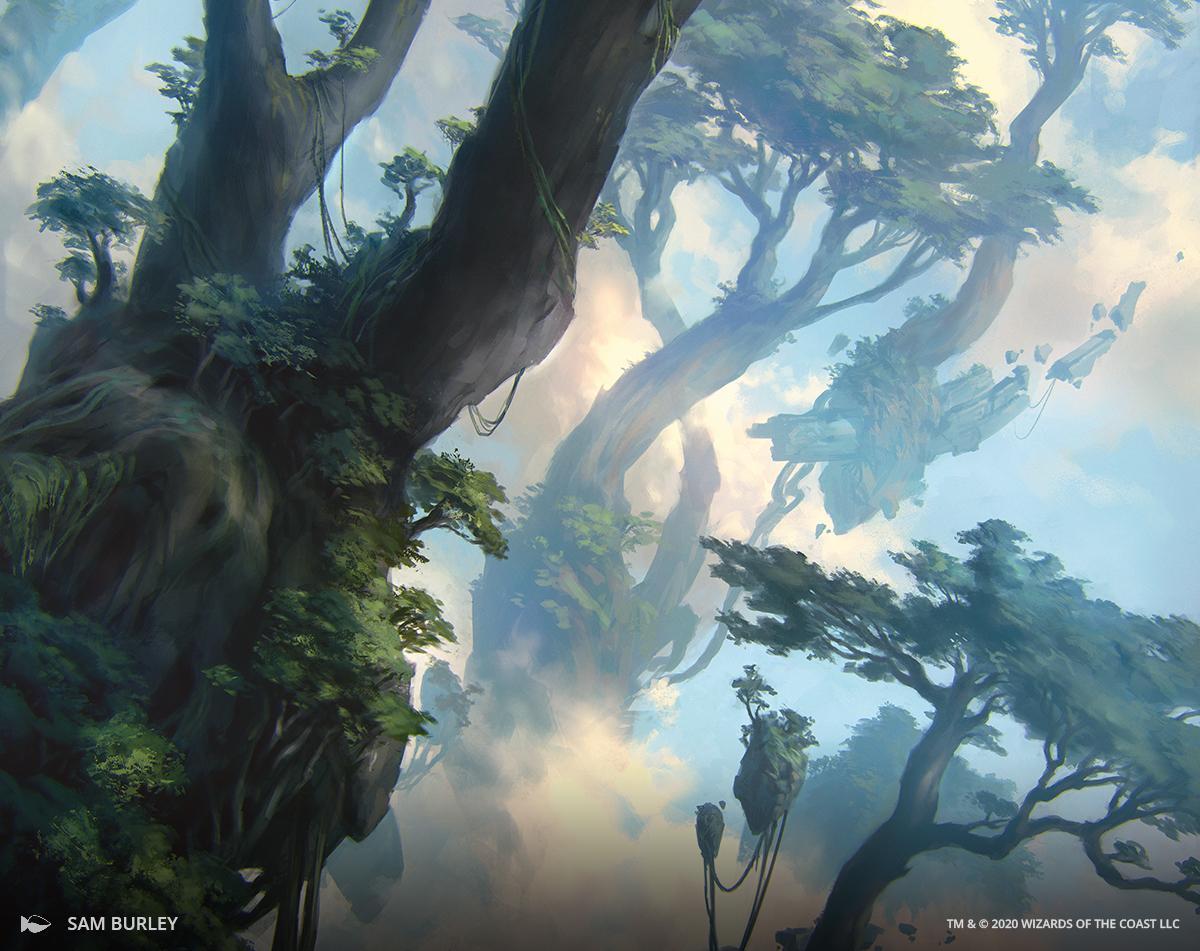 Good Morning Magic Details History Of Full Art Lands