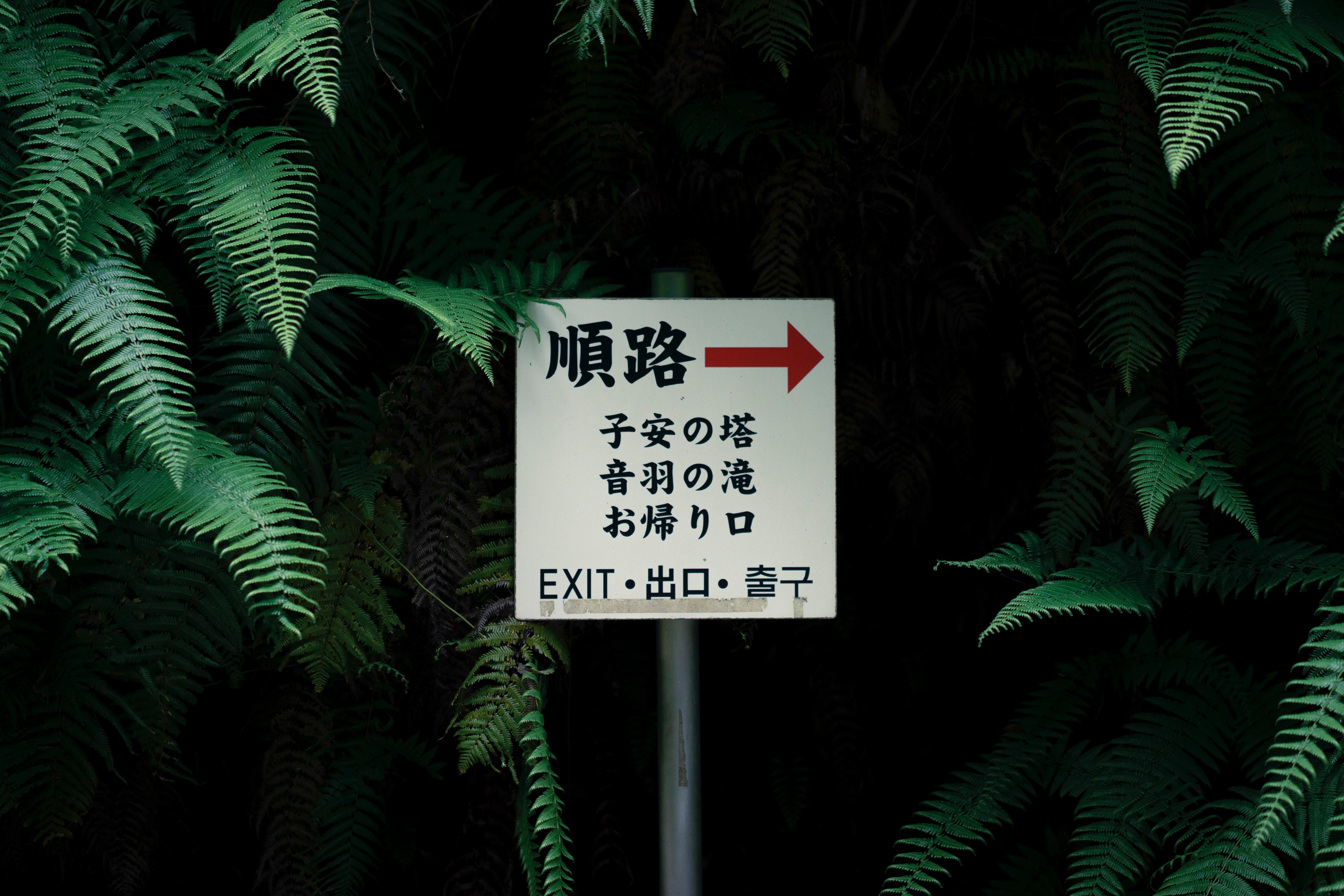 A hidden Japanese sign