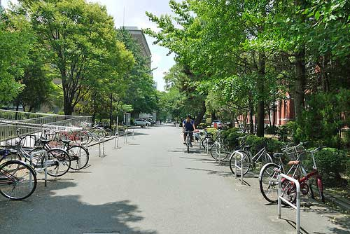 Summer at Kyoto University