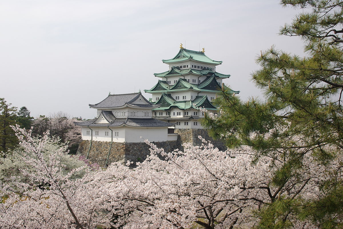 Nagoya Castle and cherry blossoms during springtime.