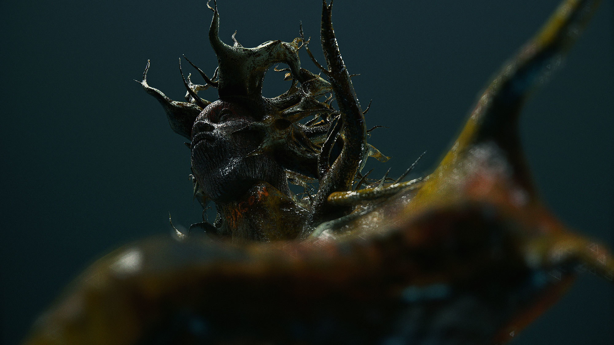 human face in bug form