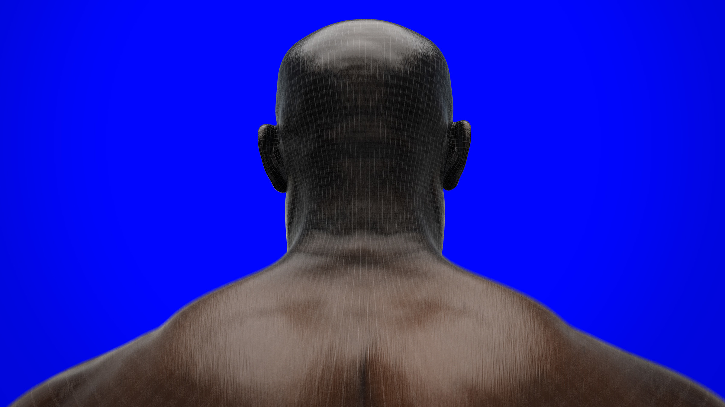 back of man's head and shoulders
