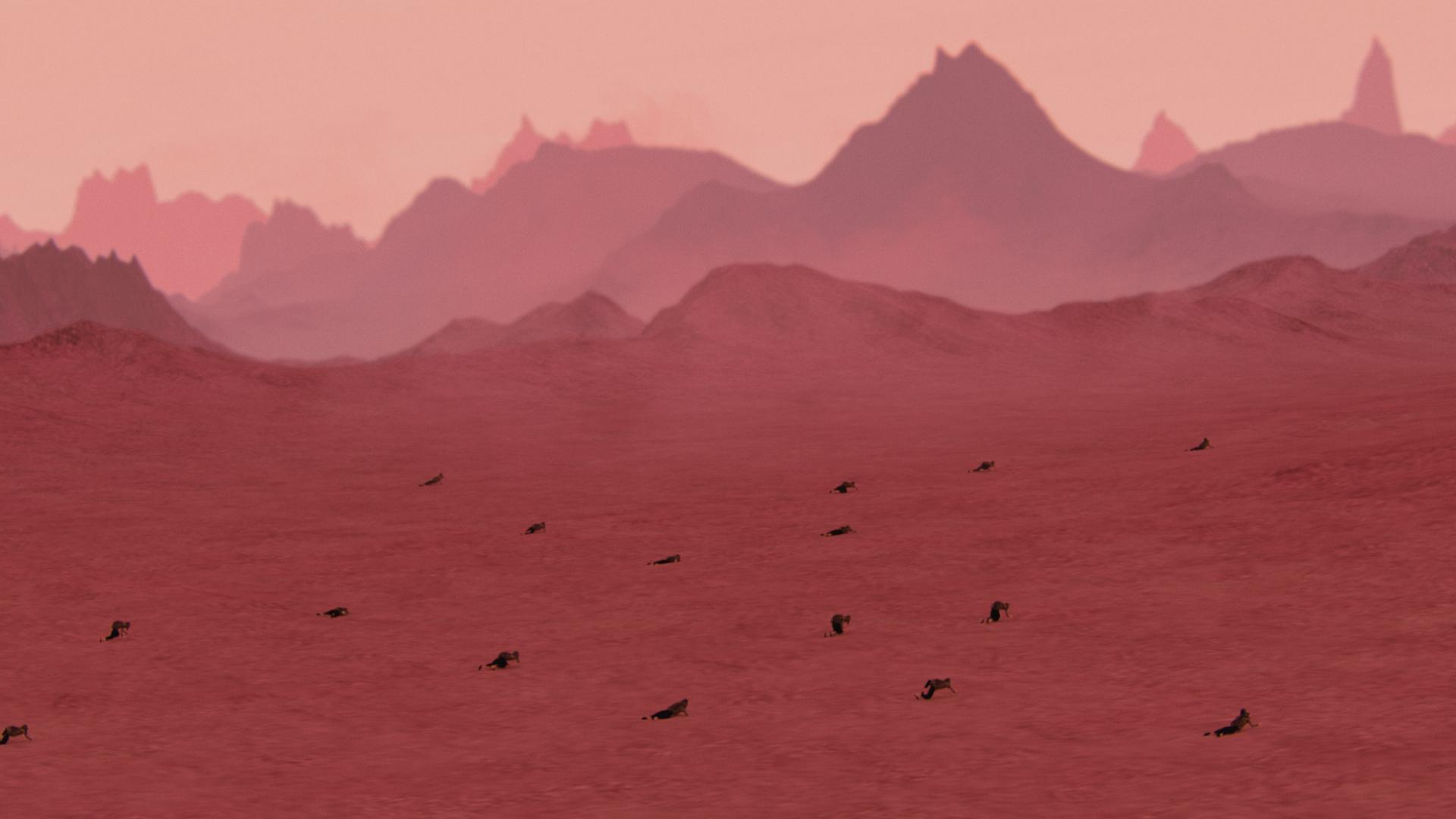 film still pink landscape
