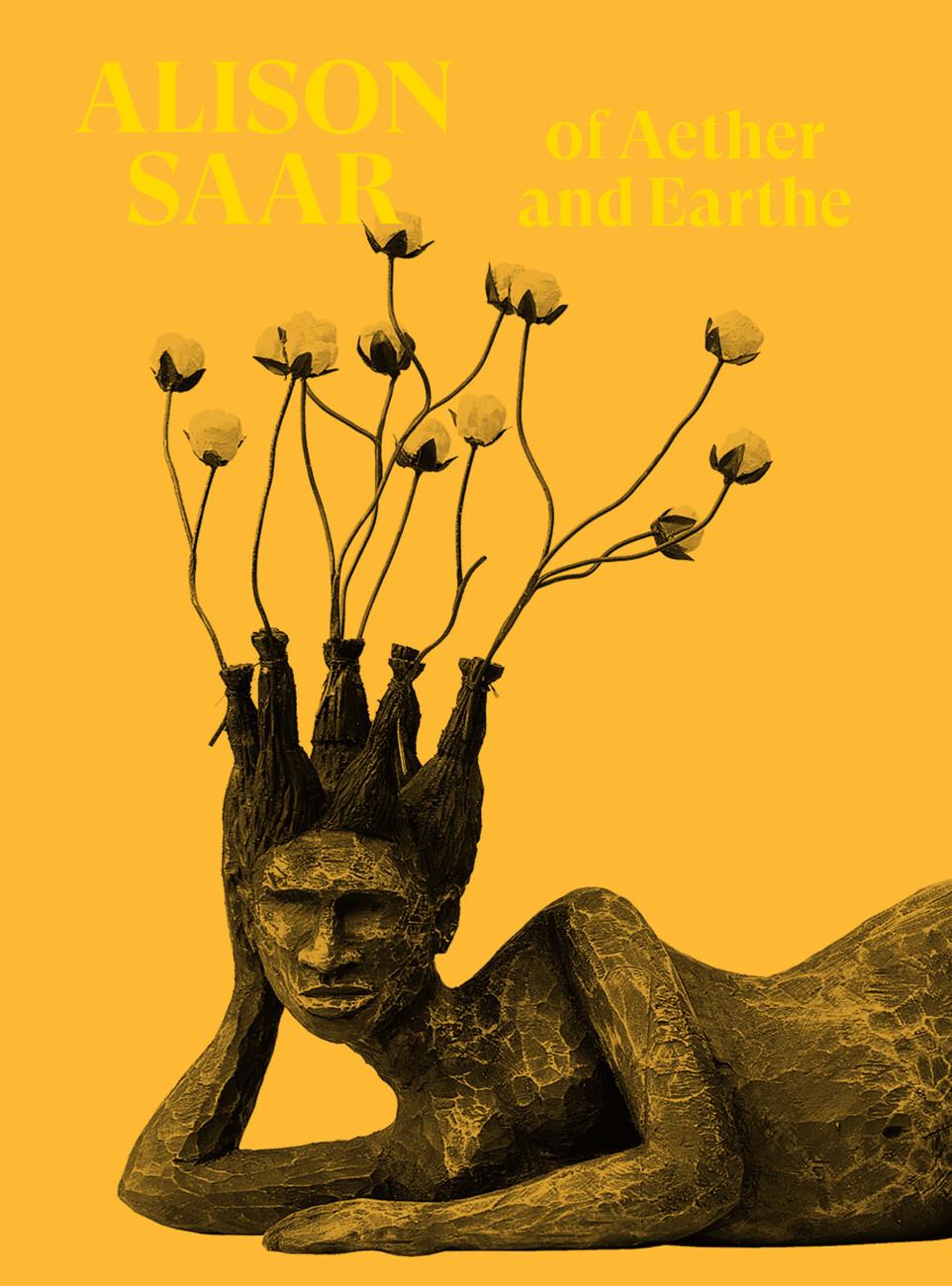 book cover Alison Saar