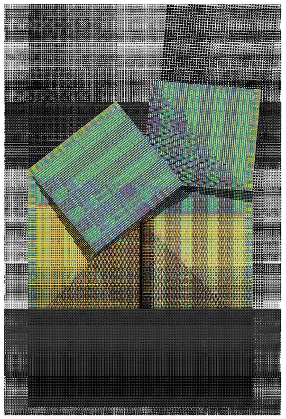 Atelier Manferdini Bp Print Ii