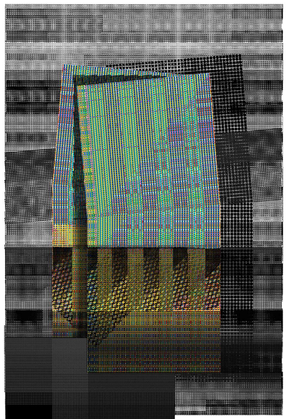 Atelier Manferdini Bp Print Iii