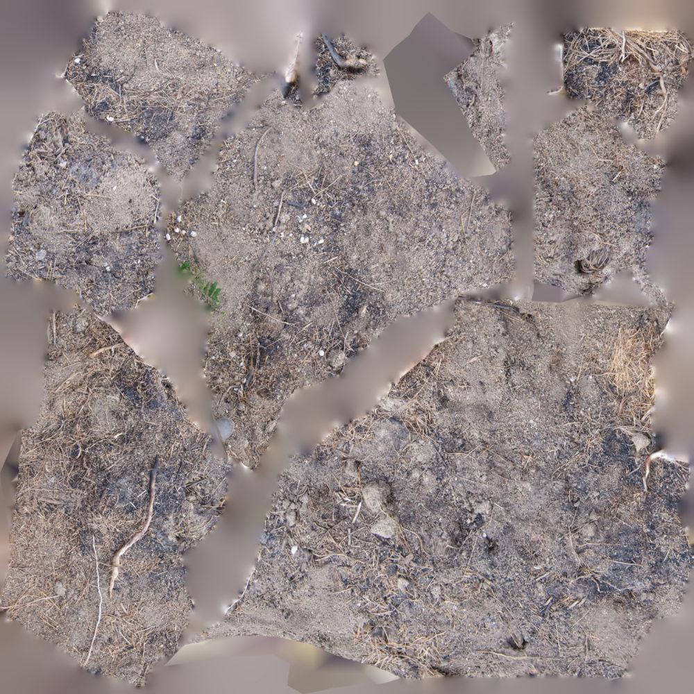 02_Texture-map_Tableau-estuary_servo-los-angeles