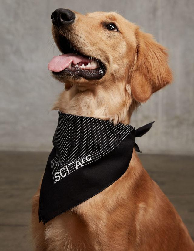 sciarc logo black bandana