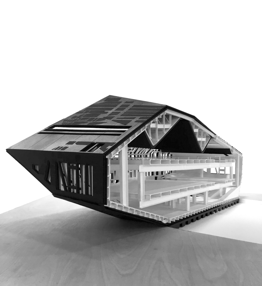 black and white sectional thesis model