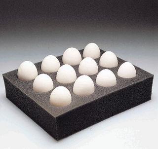 MOYER'S CHICKS INC SE 878510 Viable Chicken Eggs PK/12