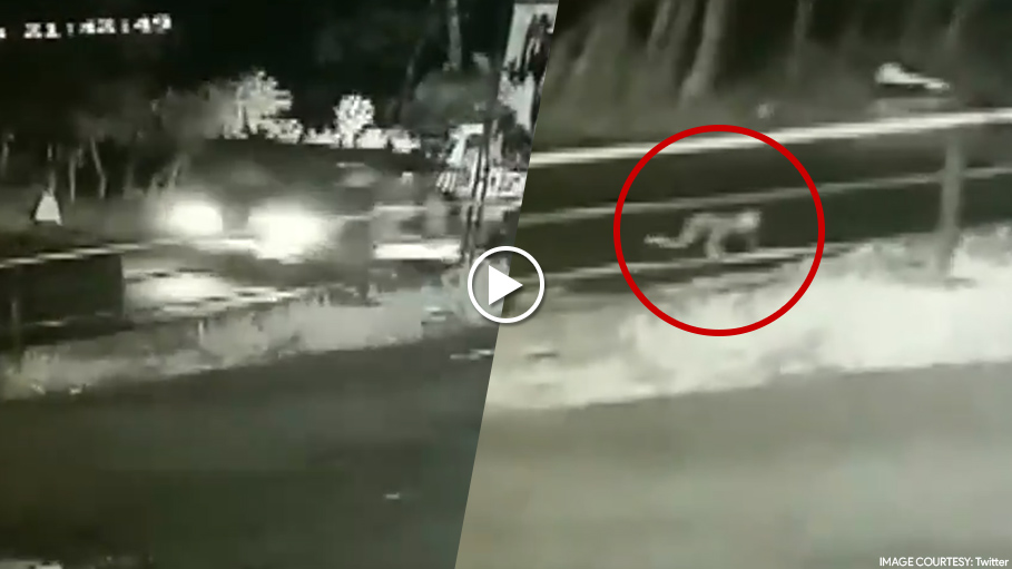 Baby Miraculously Survives After Falling From a Speeding Jeep While Parents Were Asleep