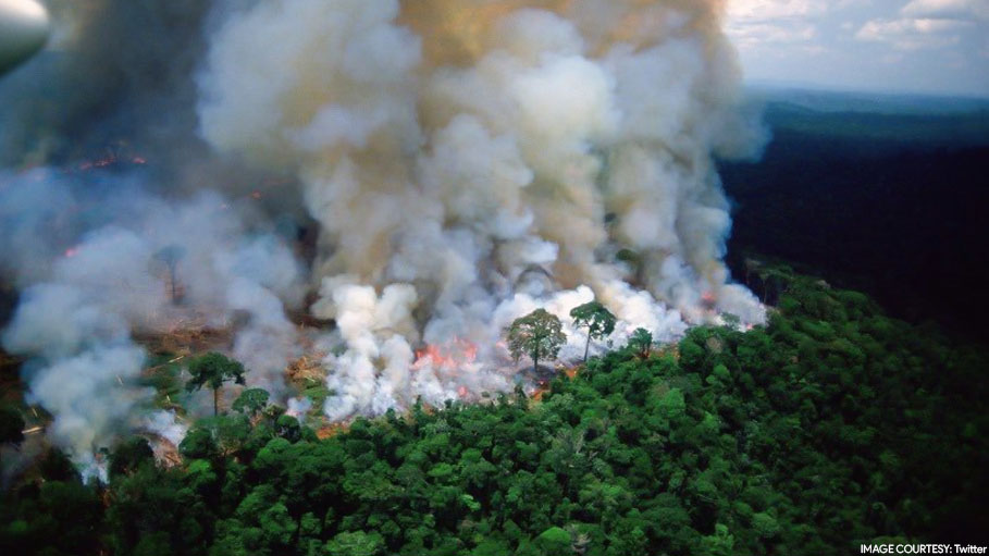 Amazon Rainforest is Burning and This is How Twitterati React to This Environmental Disaster