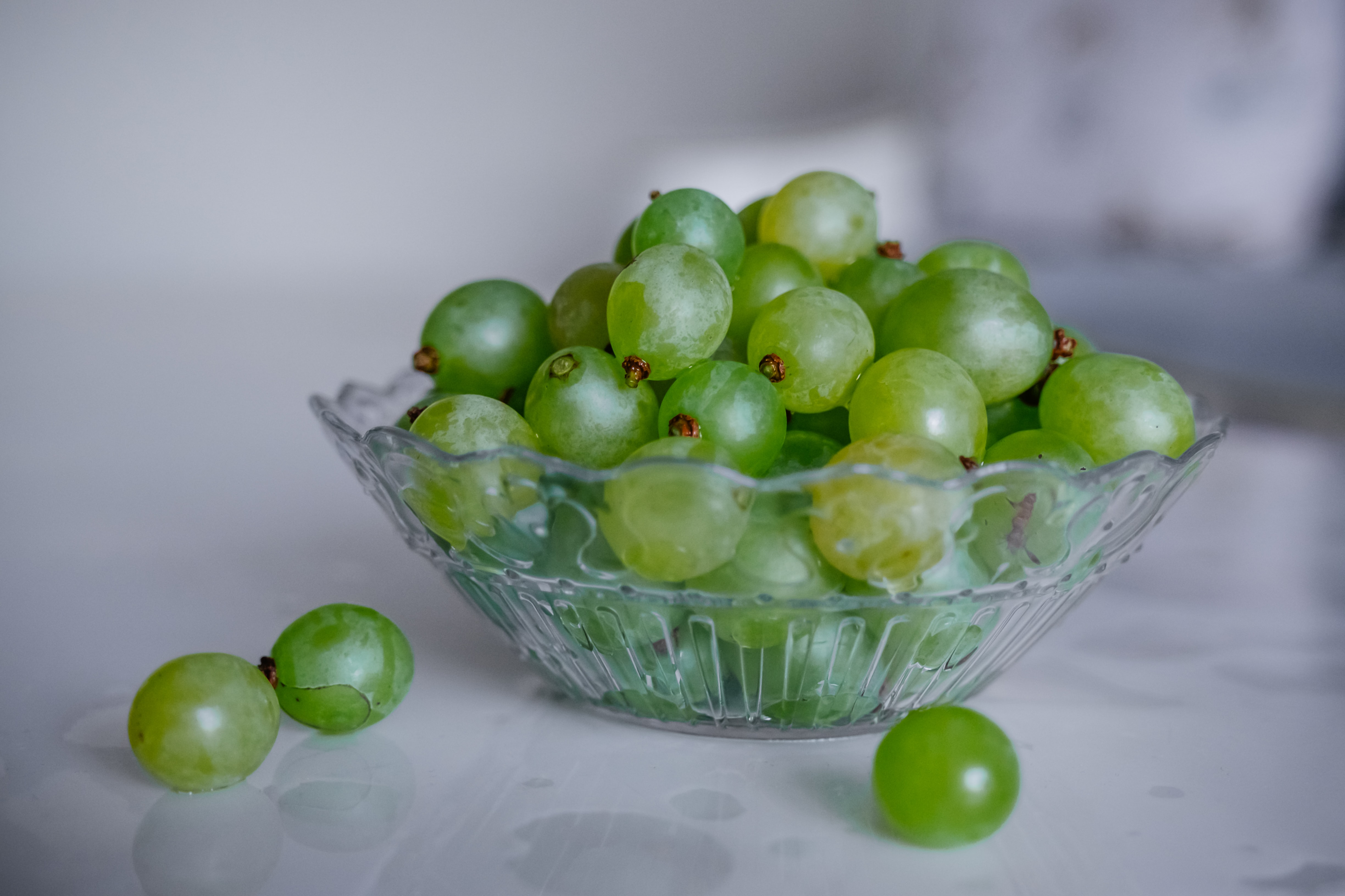 grapes and dogs