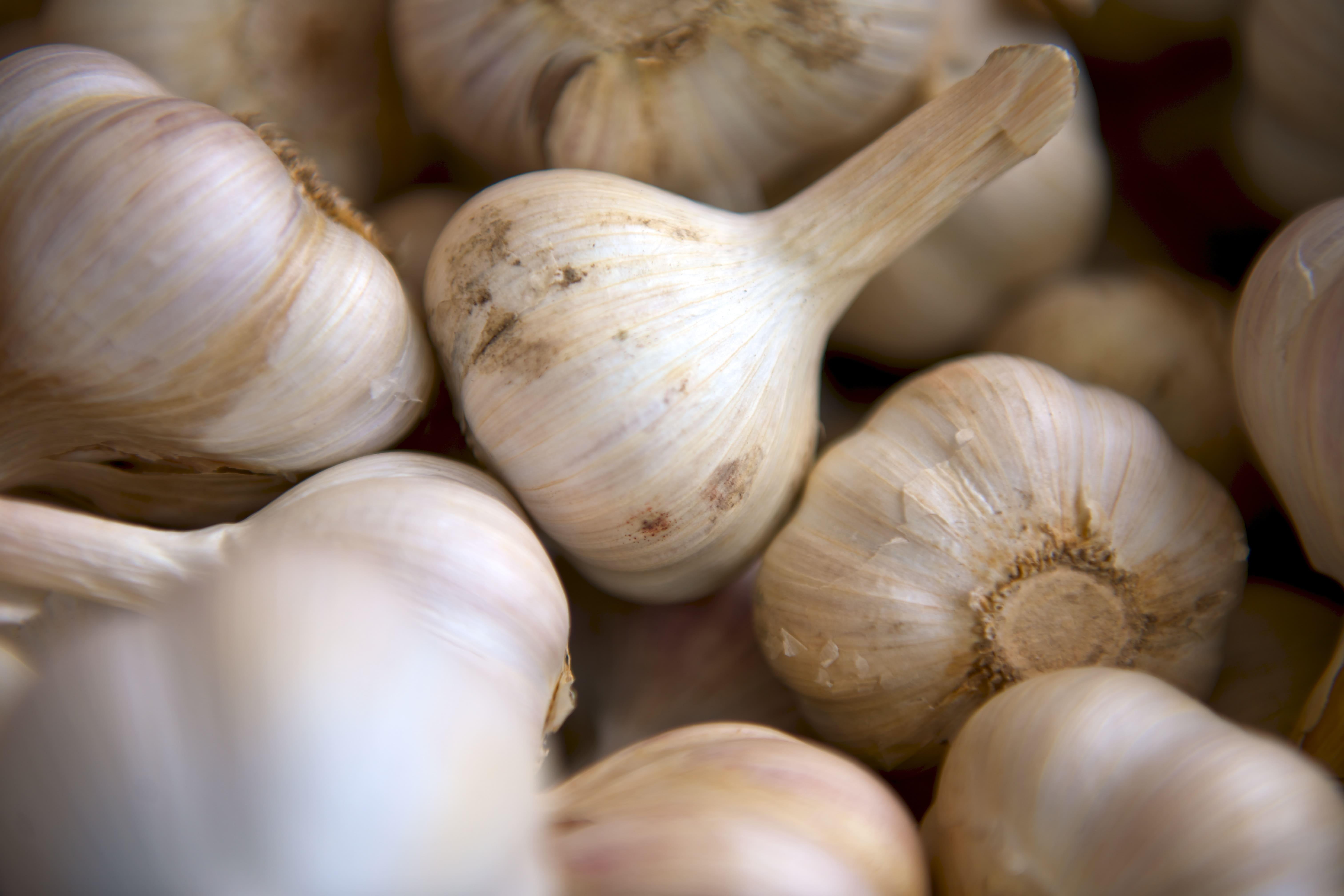 basket of garlic cloves