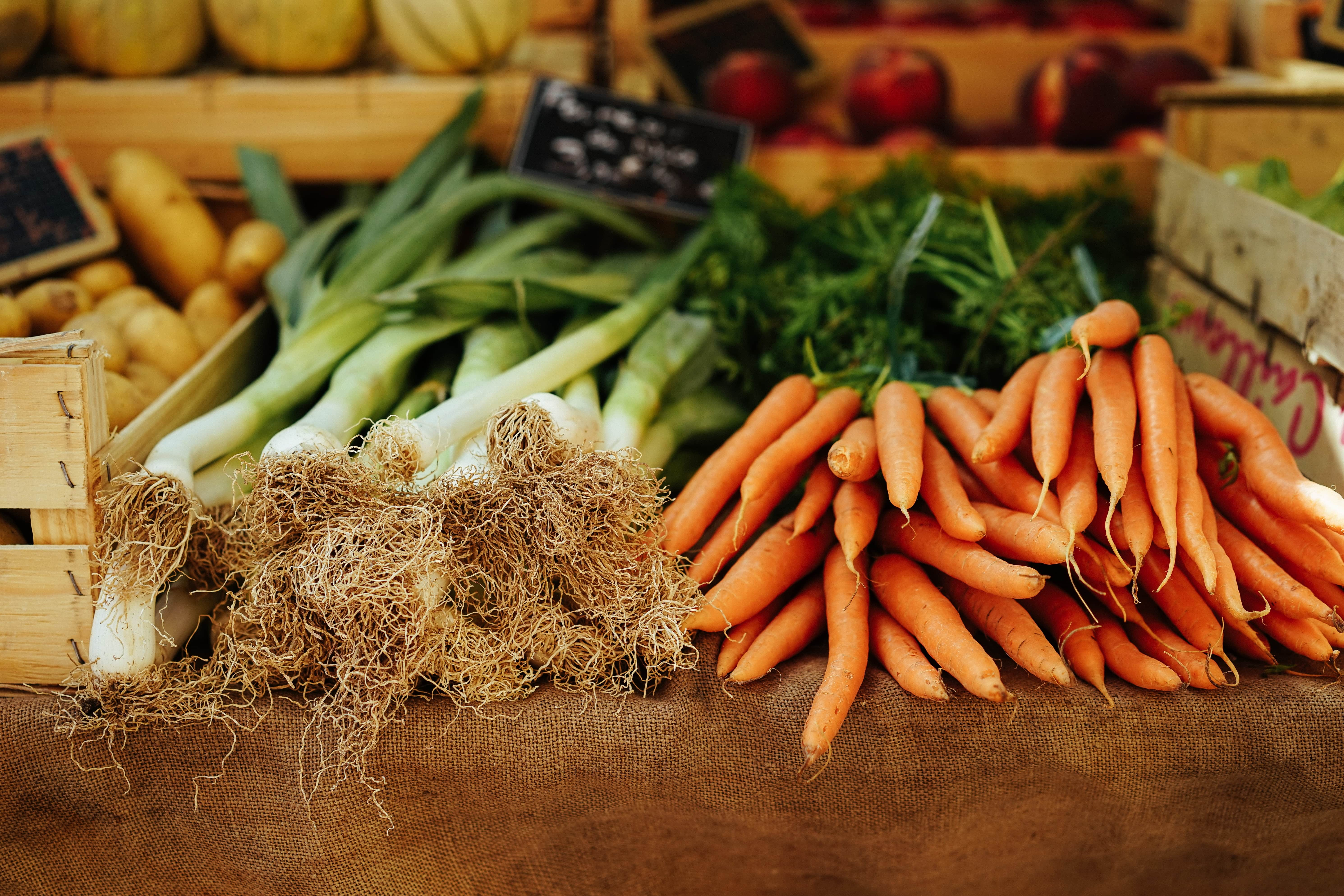 ruits and vegetables for dogs