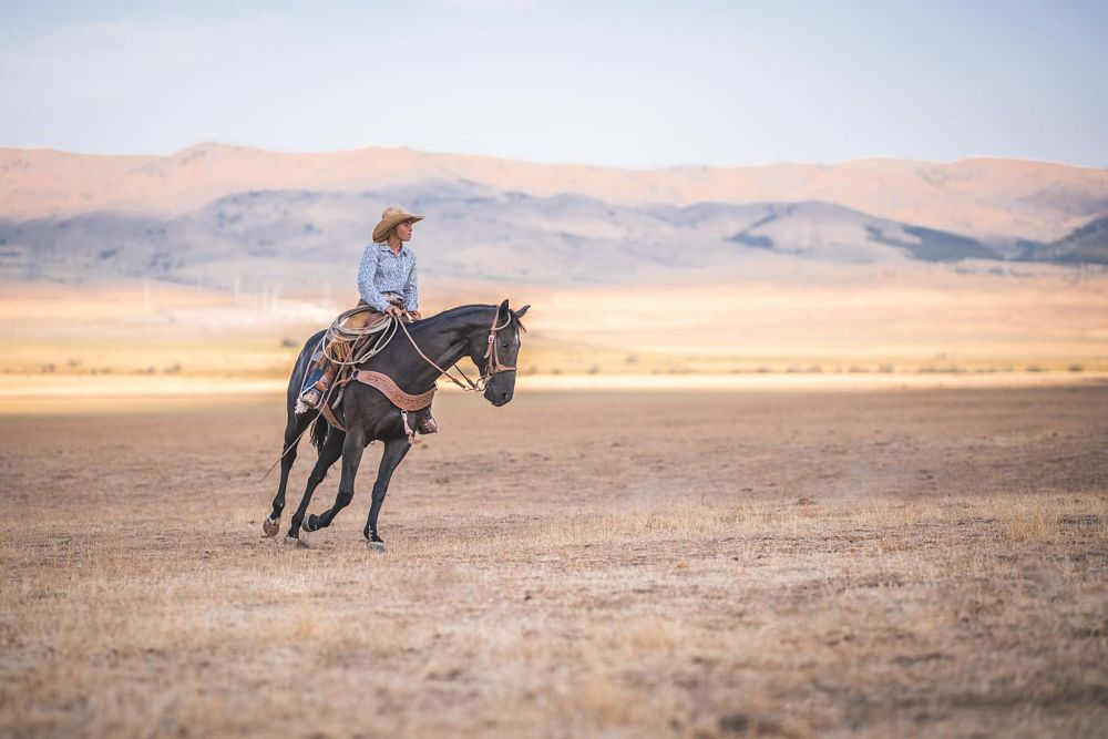 how to exercise your horse and manage weight riding
