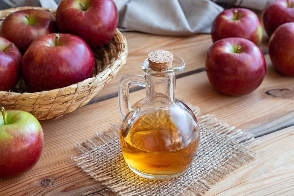 what to give a constipated dog apple cider vinegar