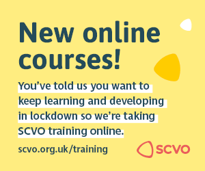 SCVO Training