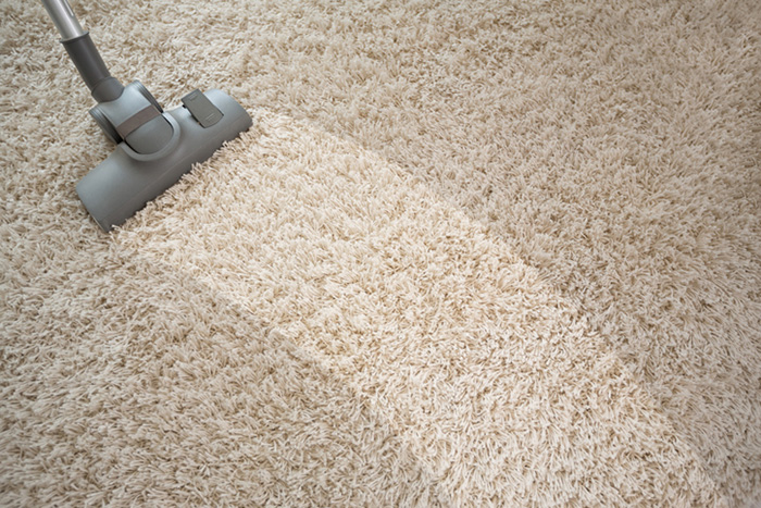 Upholstery and Carpet Maintenance