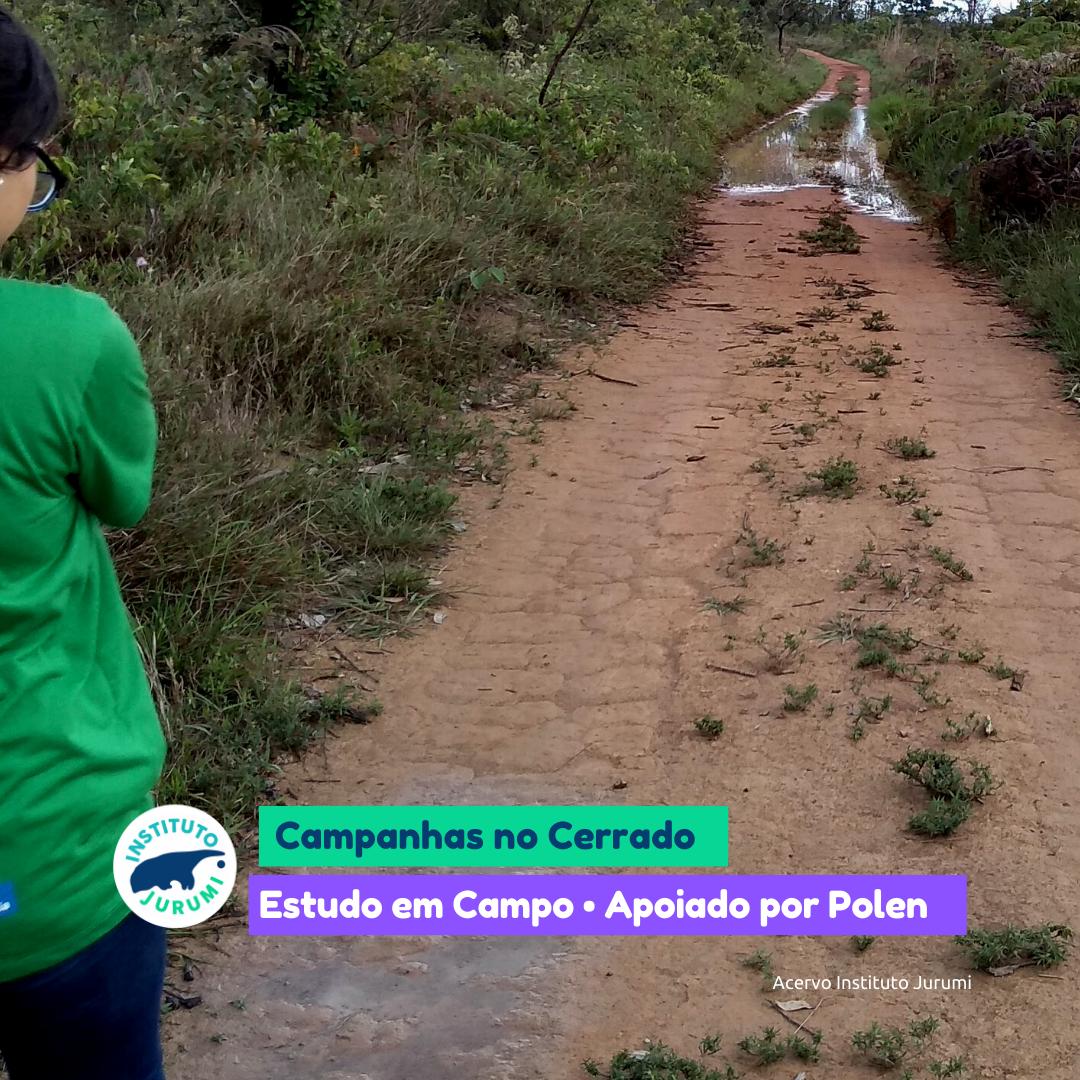 Campanhas no Cerrado