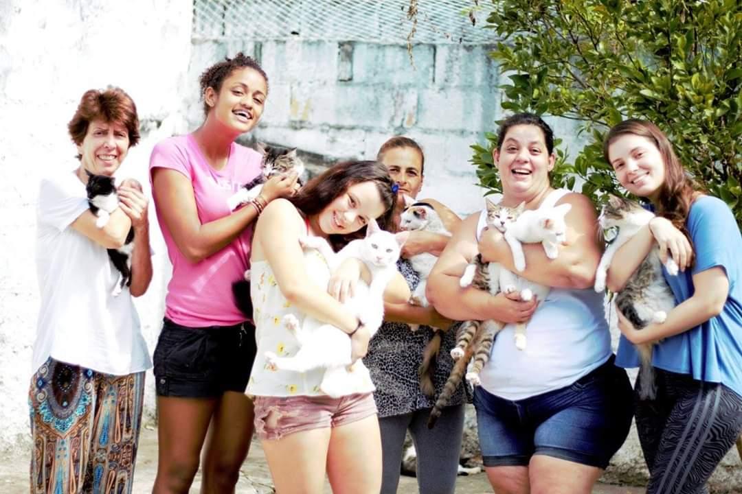 Equipe associação paulista abrigo de gatos anjo