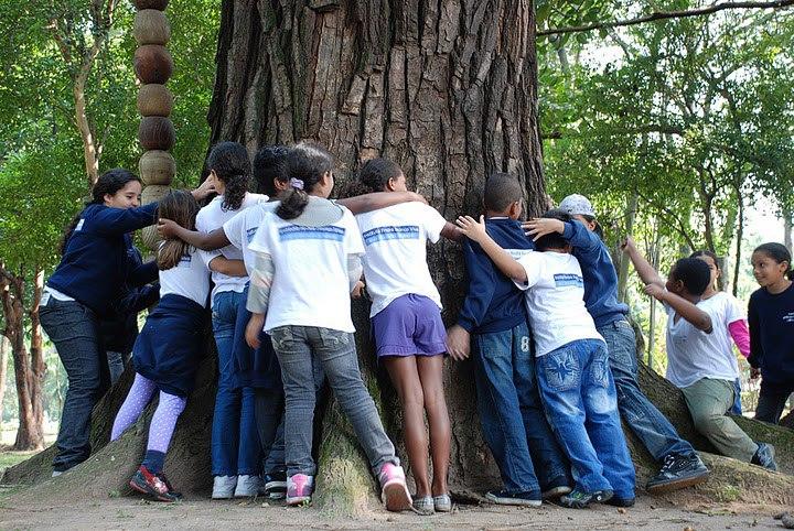 Foto da equipe da ONG Instituto Árvores Vivas