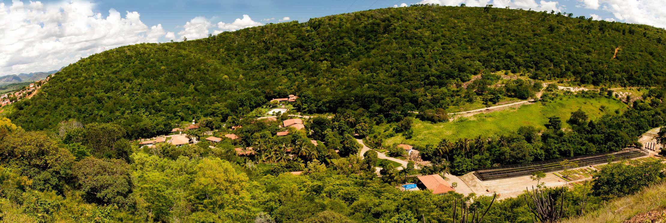 ONG Ambiental que promove a recuperação da Mata Atlântica e das nascentes no Vale do Rio Doce. Participe desse ideal apoiando nossas ações.