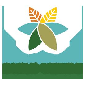 Instituto Educacional Ouro Verde
