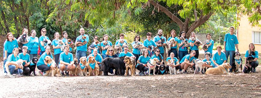 Equipe Instituto para Atividade, Terapia e Educação Assistida por cães de Campinas
