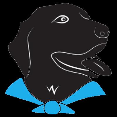 Instituto para Atividade, Terapia e Educação Assistida por cães de Campinas