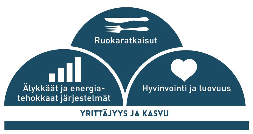 SeAMKin painoalat: Ruokaratkaisut, Älykkäät ja energiatehokkaat järjestelmät, Hyvinvointi ja luovuus, Yrittäjyys ja kasvu