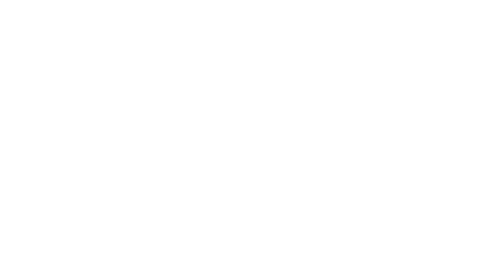 FINEEC-AUDITED-white
