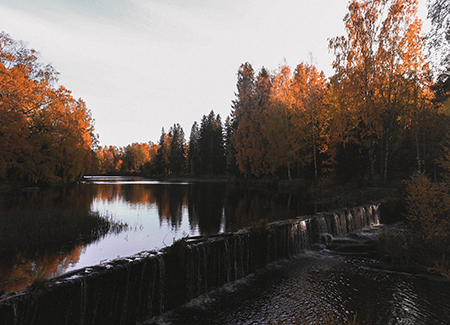 Autumn in Finland (Photographer: Binh Nguyen).