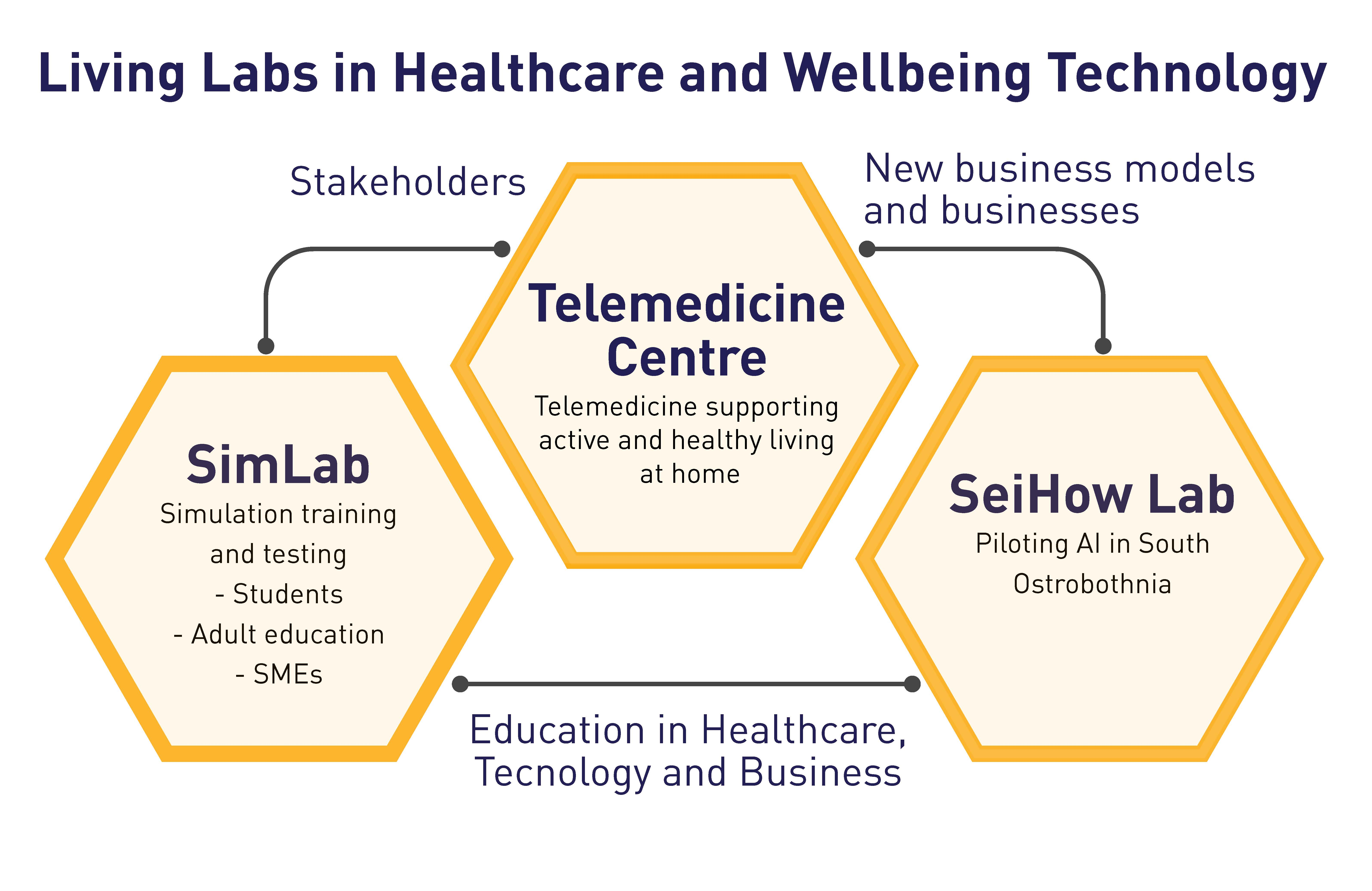 The figure is illustrating the three major Living Labs in Healthcare and Wellbeing Technology at SeAMK: Telemedicine Centre, Simulation Lab, and SeiHoW Lab.