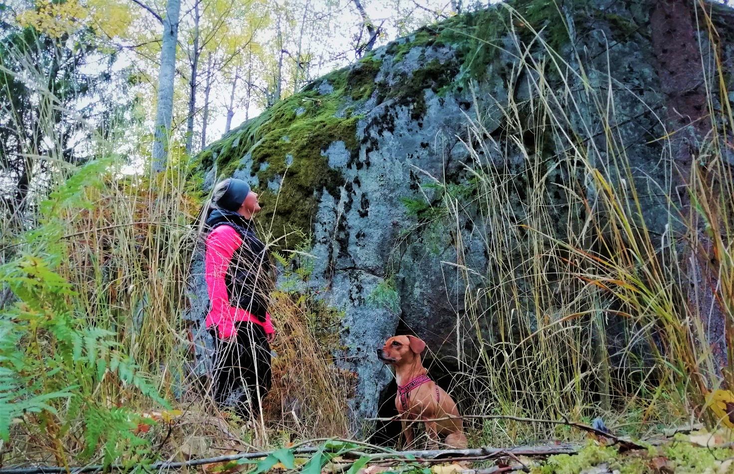 Nainen ja koira metsälenkillä suuren kallion vieressä.