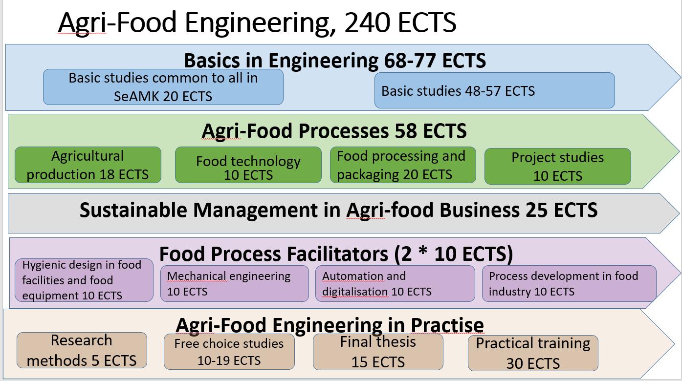 Agro-Food Engineering programme's stucture of studies.