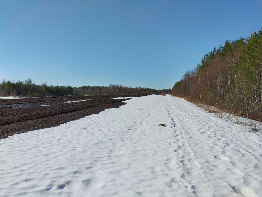 Luminen turvetuotantomaisema.