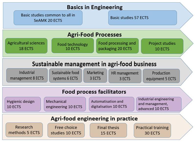 Agri-Food Engineering (AFE) structure od studies.