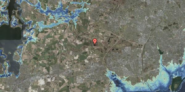 Stomflod og havvand på Solager 64, 2630 Taastrup