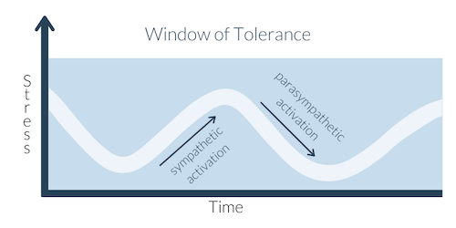 graph of nervous system activation within a window of tolerance