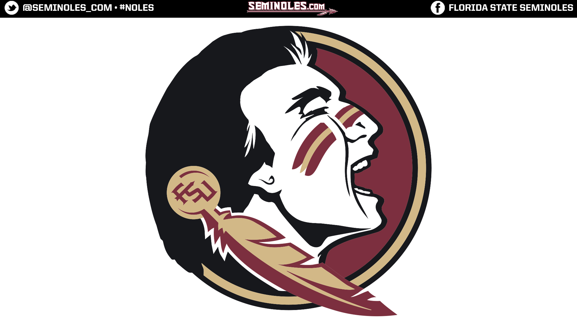 Widescreen Seminole Head White
