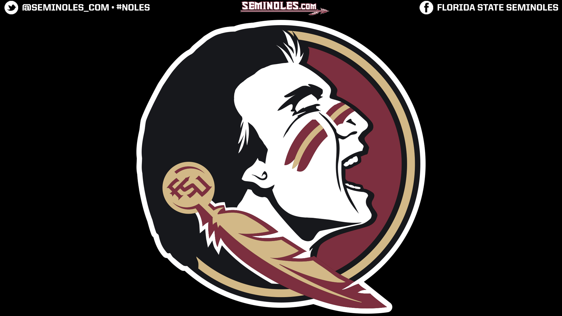 Widescreen Seminole Head Black