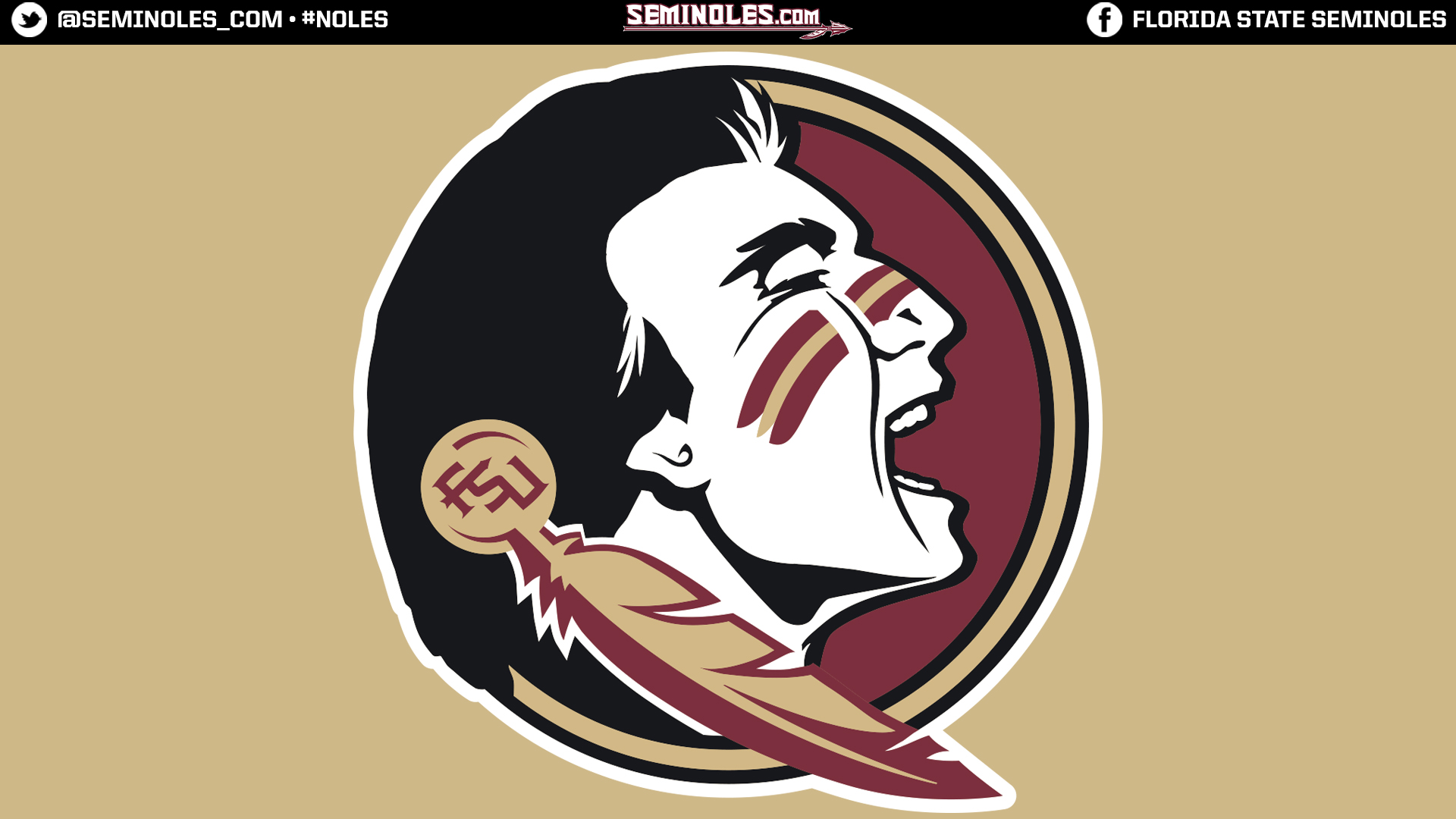 Widescreen Seminole Head Gold
