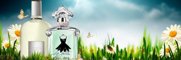 Perfumy miesiąca! Świeżość w zielonym wydaniu