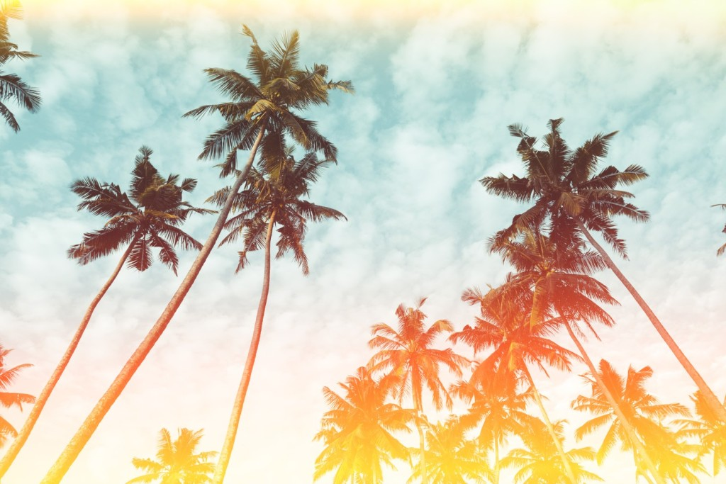 Letnia świeżość - Calvin Klein CK One Summer